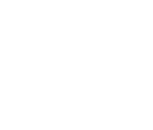 Lion Security logo